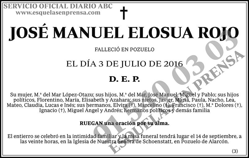 José Manuel Elosua Rojo